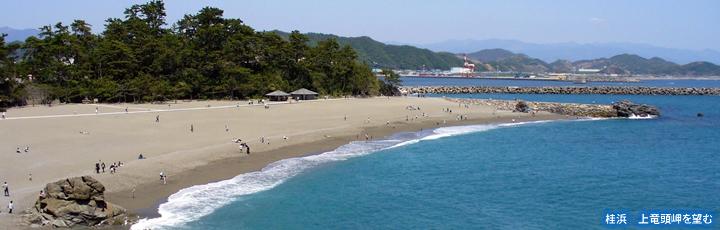 高知県のイメージ画像