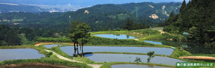 新潟県のイメージ画像